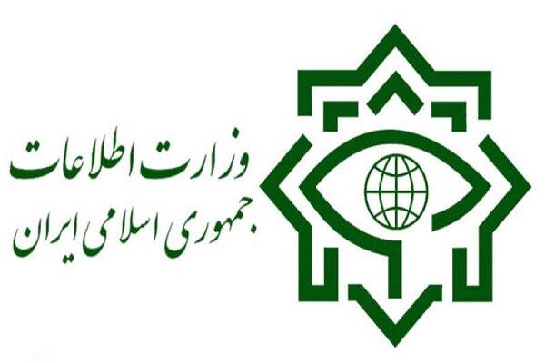 وزارت اطلاعات یک شبکه ضد انقلاب را منهدم و اعضای آن را دستگیر کرد