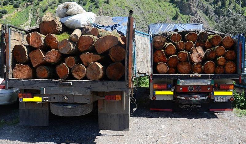 دو محموله 19 تنی چوب قاچاق در سرپلذهاب توقیف شد/ دستگیری 4 متهم