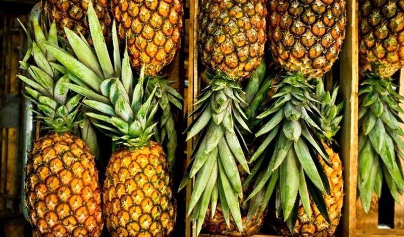 آناناس های قاچاق در قصرشیرین به مقصد نرسید